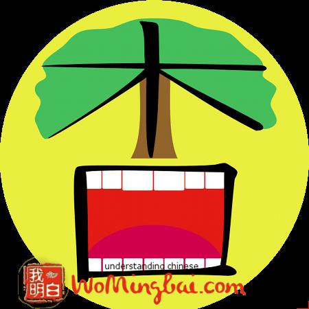 chinesisches zeichen aprikose xing 杏 illustriert